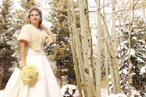 I came across this gorgeous Winter Wedding color scheme at The Perfect