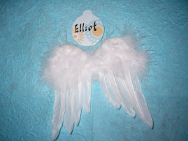 Elliot's Wings