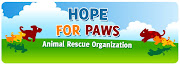 Amazing Animal Rescue Group in Los Angeles