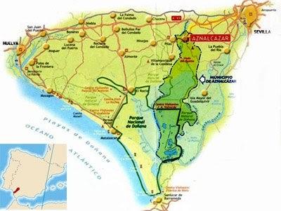Lobo astur parque nacional de do ana for Muebles los leones valencia