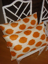 Products Ikat Cushions