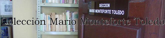 Colección Mario Monteforte Toledo