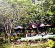 Hutan Lipur Cherok To'kun