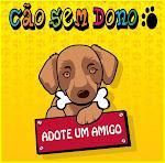 Adoção de Animais em São Luís