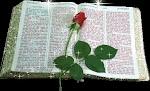 Biblia  Sagrada  leia - Click aqui