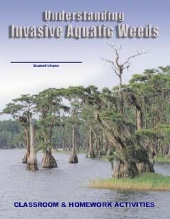 Understanding Invasive Aquatic Weeds