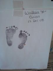 Skippy's Toes