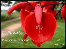 Flor de ceibo (Flor nacional de la República Argentina)