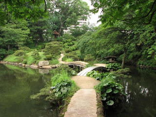 Зеленый сад: цветы с зелеными цветками