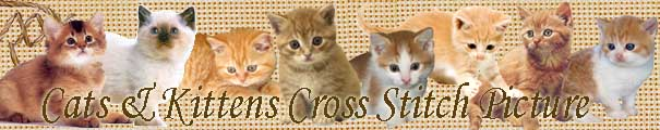 Cats & Kittens Cross Stitch Picture