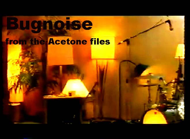 "Bugnoise is the Acetone ""Web Page""?"