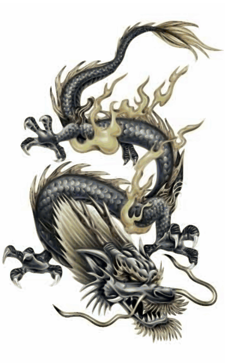 tiger and dragon tattoo meaning. dragon tiger tattoos.