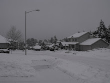 Oregon's winter snow storm