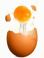 Dieta do ovo cozido: ovos cozidos emagrece