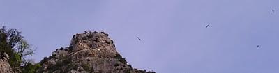 Rocher aux vautours