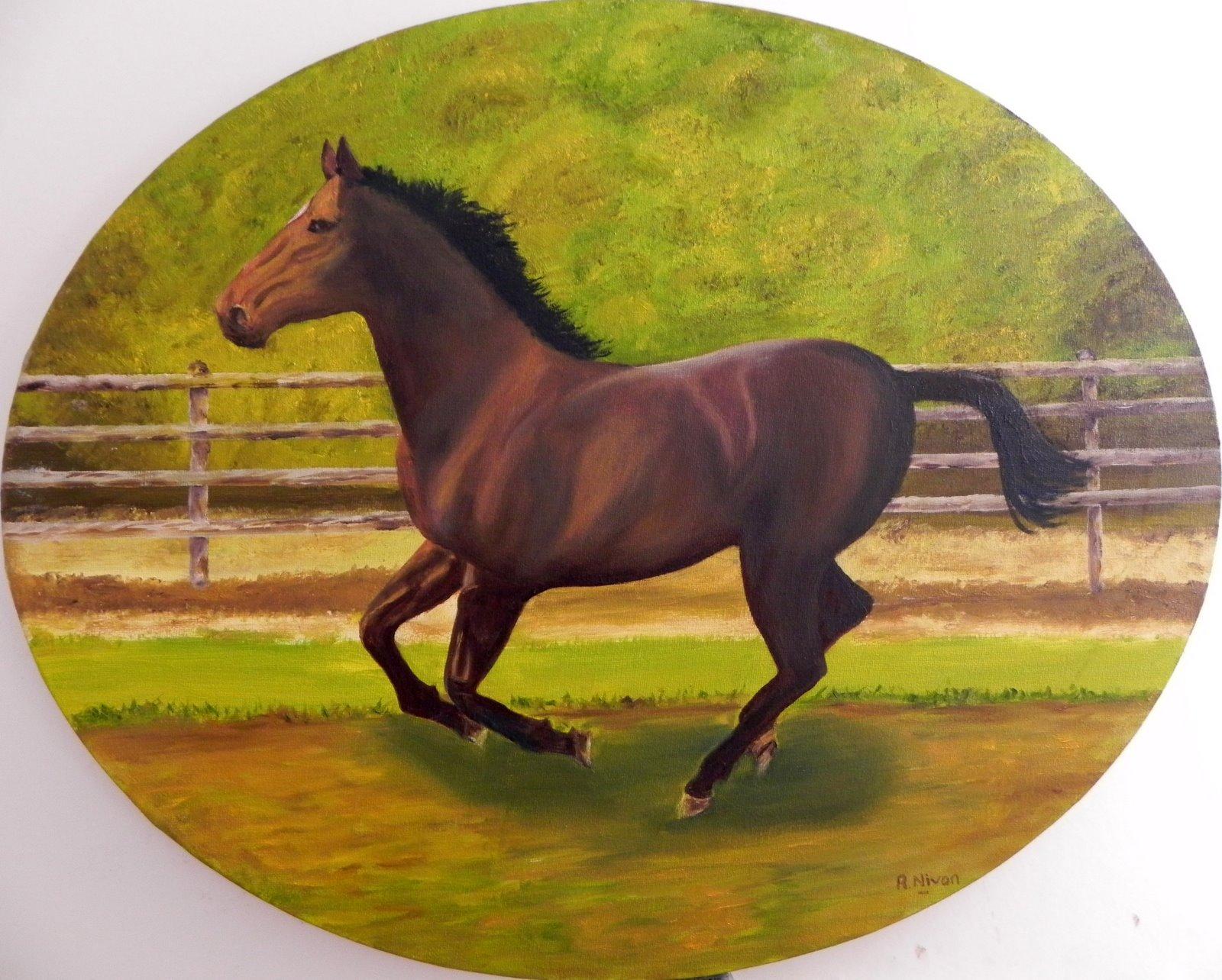 Les activit s de fran oise et robert le cheval au galop - Comment dessiner un cheval au galop ...