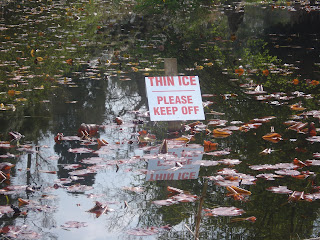 Sign saying Thin Ice in the middle of a lake