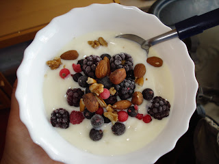A Bowl of youghurt with frozen fruit topping