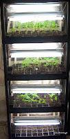 Φτιάχνω προστατευμένο σπορείο και θερμοκήπιο λαχανικών