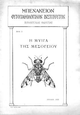 Η μύγα της μεσογείου