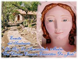 Virgen de Salta