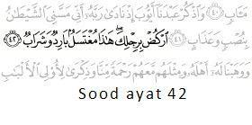 Surah Sood ayat 42