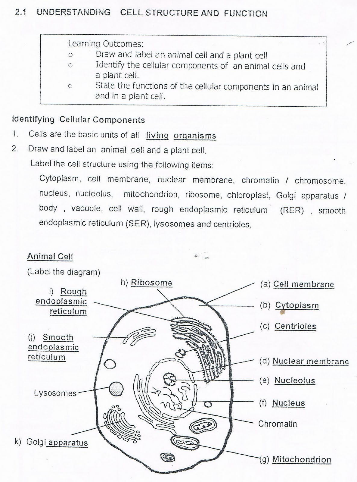 biology chapter 1 2 3 All intermediate 11th class students check here 1st year biology notes all chapter 1 2 3 4 5 6 7 8 9 these all notes are very use full for every one before the start.