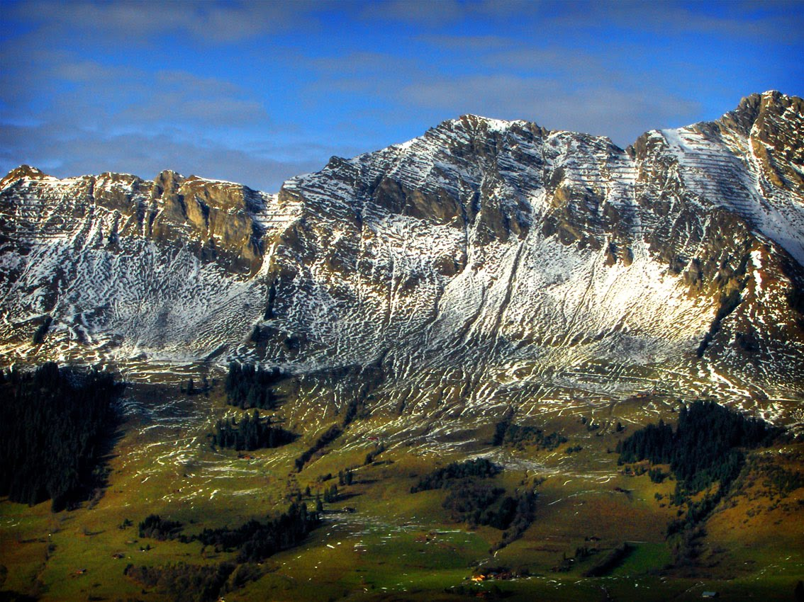 pin paysages montagne fond - photo #4