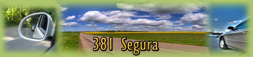 381 Segura