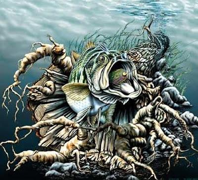 Hidden Bass Fish Optical Illusion