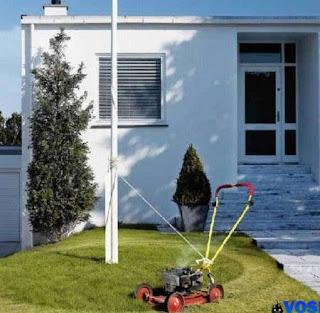 http://3.bp.blogspot.com/_-_DfA6iMs2w/TJOxbKnRIuI/AAAAAAAADMo/rsGewnSpxH4/s1600/a97183_g121_7-lawn.jpg