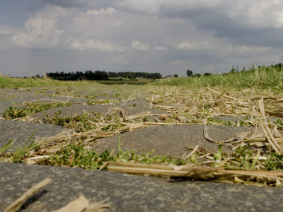 Chemin 001 - Leuze-en-Hainaut - Belgique - Anne-Sarine Limpens - 2008