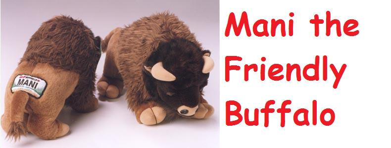 Mani the Friendly Buffalo