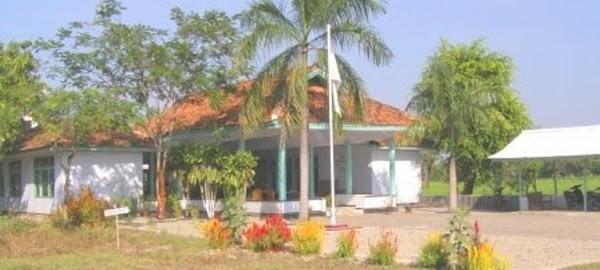 Media Online Wong Desa Kertajaya