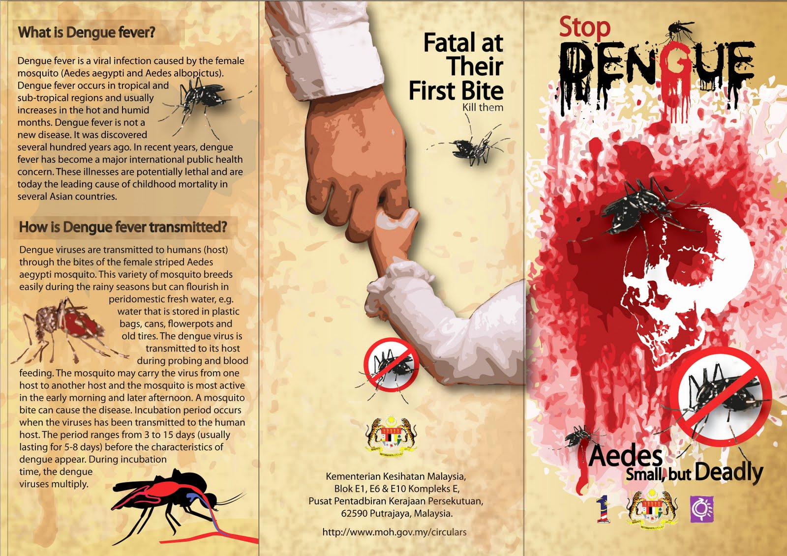 dengue fever Burkina faso has been experiencing an epidemic of dengue fever since week 31 of 2017 (week ending on 6 august) who officially.