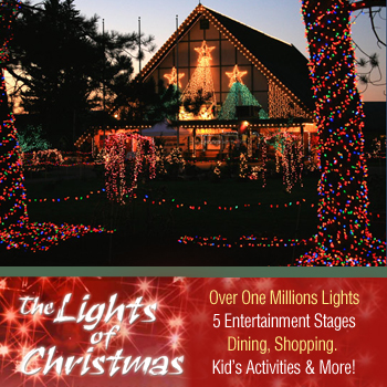 coupon confidence warm beach lights of christmas at half off