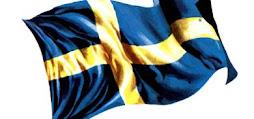 Nationaldagen (El día de la Patria) se celebra en toda Suecia