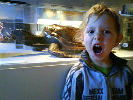 joseph jr. estuvo de visita en el Universeum (zoológico supermoderno)
