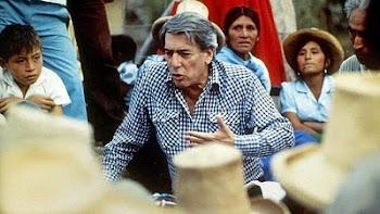 decidió probar fotruna en 1998 y se lanzó a la lucha política fue candidato
