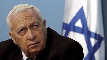 enero del 2006 Ariel Sharon entró en estado de coma