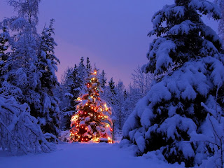 Scenic Christmas Wallpaper