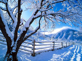 Free Christmas Winter Fence Wallpapers