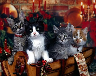 Free Christmas Animal Wallpaper