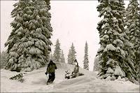 christmas skiing holidays