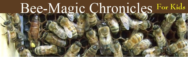 Bee-Magic Chronicles for Kids