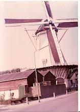 Moínho holandês