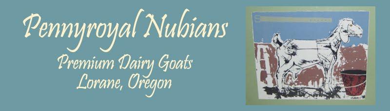 Pennyroyal Nubian Goats