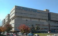 monkey center