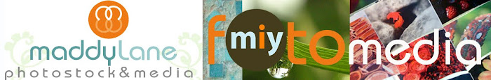 miy fotomedia ~ Miy Photos, photo stock & media