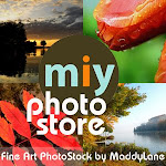 Miy Photo Store ~ by Maddylane Photography